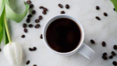Café Ursula