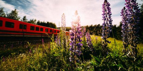 Metro (c) Jussi Hellsten / Visit Helsinki