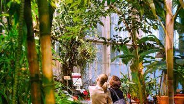 Kaisaniemi Botanic Garden